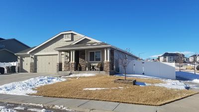 Single Family Home For Sale: 4400 Heart X Ct