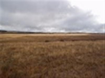 Laramie Residential Lots & Land For Sale: Tbd Ironhorse Road (Vacant Land)