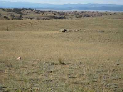 Laramie Residential Lots & Land For Sale: Tracts 9 & 10 Wind Song Ranch