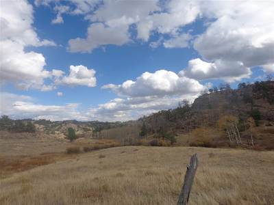 Residential Lots & Land For Sale: Old Wagon Road Old Wagon Road