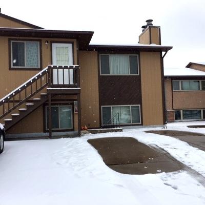 Laramie Single Family Home For Sale: 1724 Fetterman #4