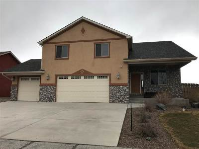 Laramie Single Family Home For Sale: 1609 Clydesdale