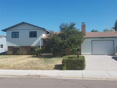 Laramie Single Family Home For Sale: 1656 Coughlin Street