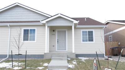 Laramie Single Family Home For Sale: 1056 Evans Street