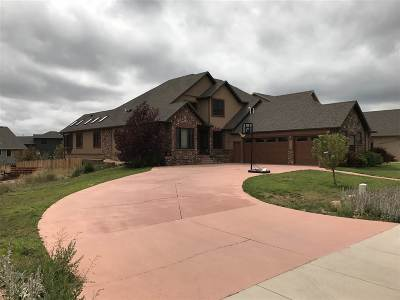 Single Family Home For Sale: 2624 Nighthawk