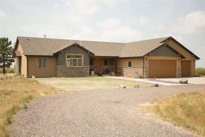 Laramie Single Family Home For Sale: 432 Katie Canyon Loop
