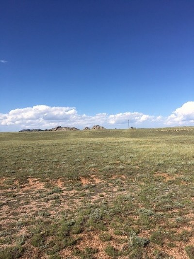 Laramie Residential Lots & Land For Sale: 11 Ames Monument