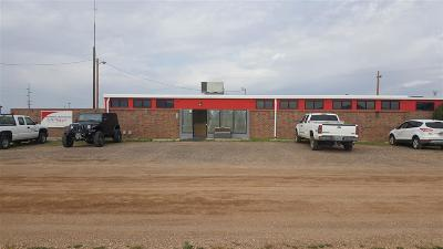 Laramie WY Commercial For Sale: $450,000