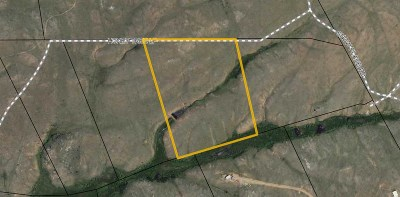 Albany County Residential Lots & Land For Sale: Tbd Honeytree Loop