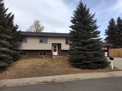 Laramie Single Family Home New: 1707 Mill Street #Laram