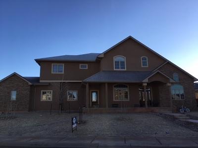 Laramie Single Family Home For Sale: 2419 Knadler