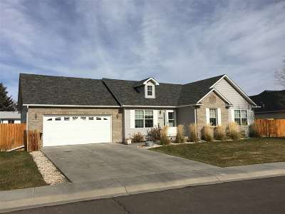 Cheyenne Single Family Home For Sale: 3924 Parkview Drive