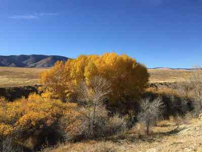 Laramie Residential Lots & Land For Sale: Tbd Tr 136 Whr