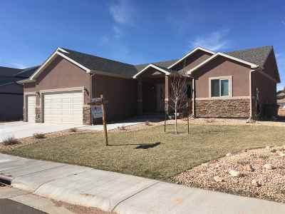 Laramie Single Family Home For Sale: 4305 Chippewa