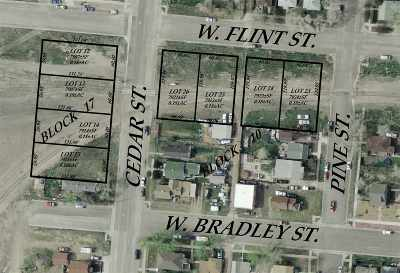 Laramie Residential Lots & Land For Sale: 358 W Flint