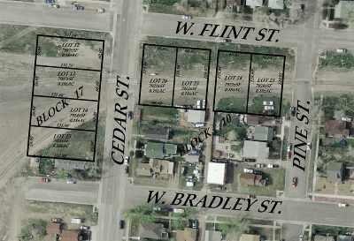 Laramie Residential Lots & Land For Sale: 364 W Flint