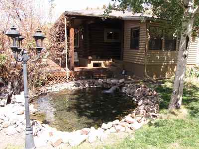 Jelm Single Family Home For Sale: 68 Highway 10
