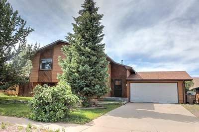 Laramie Single Family Home For Sale: 4320 Grays Gable