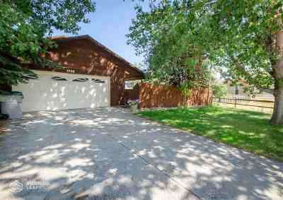 Single Family Home For Sale: 1705 Shetland Dr
