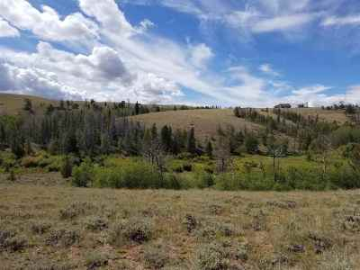 Albany County Residential Lots & Land For Sale: 48 Aspen Valley Road