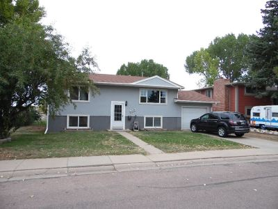 Laramie Single Family Home For Sale: 903 Mitchell Street