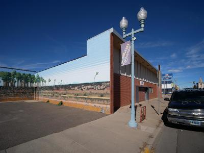 Laramie WY Commercial For Sale: $650,000