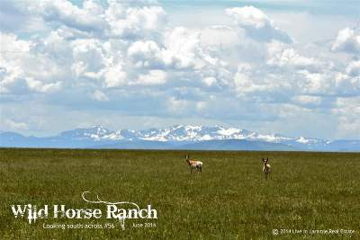 Albany County Residential Lots & Land For Sale: 56 Wild Horse Ranch