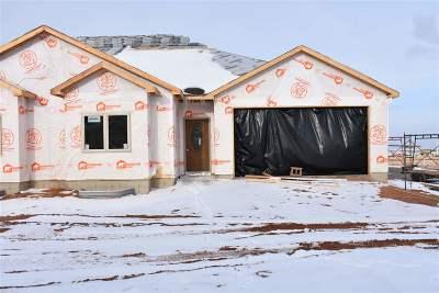 Laramie Single Family Home For Sale: 4328 Beech Street #SR2