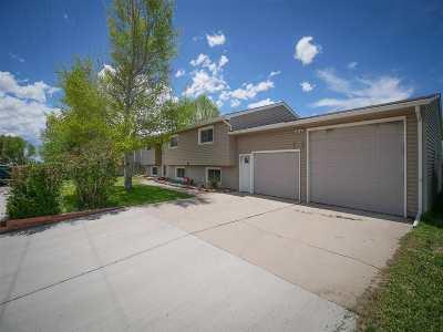 Laramie Single Family Home For Sale: 424 S Grant Street
