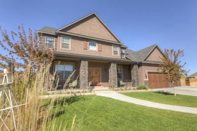 Laramie Single Family Home For Sale: 2512 Lindsey Ct.