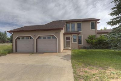 Laramie Single Family Home For Sale: 2915 Sage