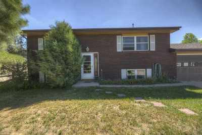 Laramie Single Family Home For Sale: 315 Arthur St.