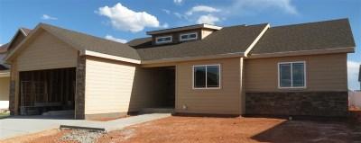 Laramie Single Family Home For Sale: 3824 Little Moon Trail