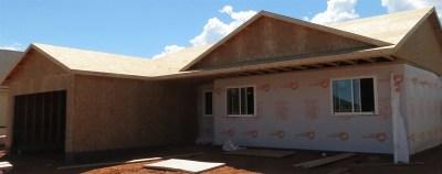 Laramie Single Family Home For Sale: 3916 Little Moon Trail