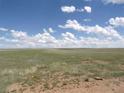Residential Lots & Land For Sale: 67/72 Medicine Bow Ranch Ph 1