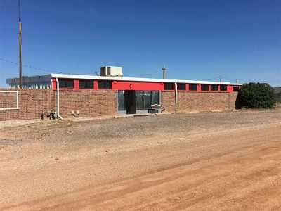 Laramie Commercial For Sale: 3840 Fort Misner Lane