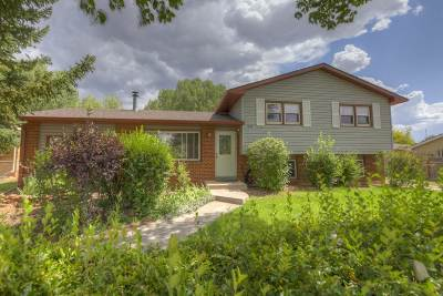 Laramie Single Family Home New: 1867 N 15th