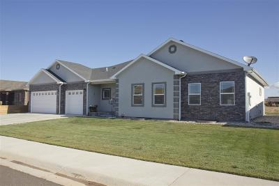 Laramie Single Family Home For Sale: 4217 Shoshone Dr.