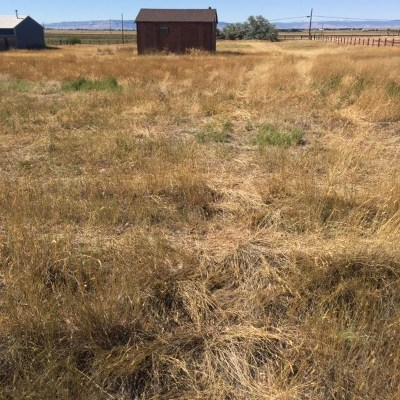 Residential Lots & Land New: 90 Gros Ventre