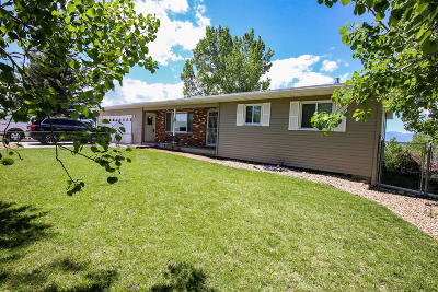 Sheridan Single Family Home For Sale: 18 Valley View Drive