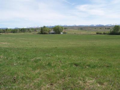 Pinedale Farm & Ranch For Sale: 33 E Pinedale