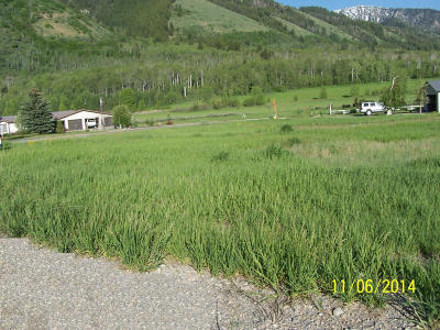 Star Valley Ranch WY Residential Lots & Land For Sale: $23,000