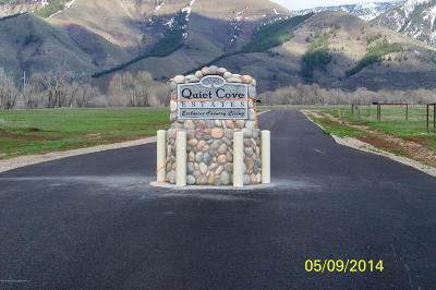Afton WY Residential Lots & Land For Sale: $89,000