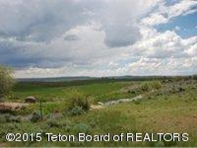 Pinedale Farm & Ranch For Sale: 23-119 Willow Lake Rd