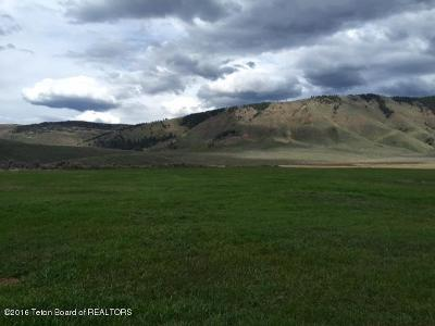 Cokeville WY Residential Lots & Land For Sale: $130,000