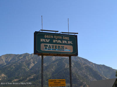 Alpine Commercial For Sale: 25 Us Highway 89