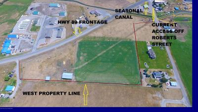 Thayne WY Commercial For Sale: $1,250,000
