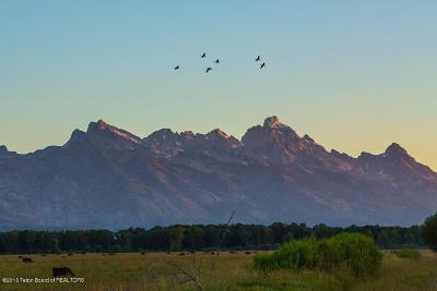 Teton County Farm & Ranch For Sale: TRACT 3 Spring Gulch Ranch
