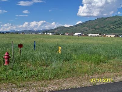 Afton WY Residential Lots & Land For Sale: $91,000