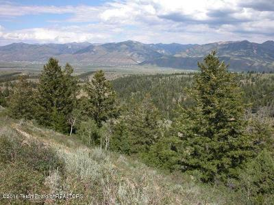 Fairview, Osmond, Smoot Residential Lots & Land For Sale: Big Ridge Wyoming